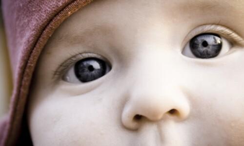 Promo Kind Auge